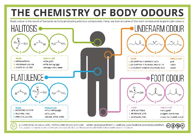 Grooming Tips  – How To Kill Body Odours?